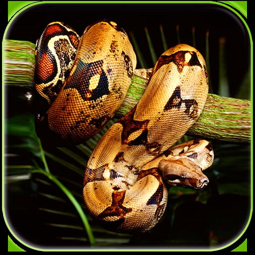 Snake Live Wallpaper Icon