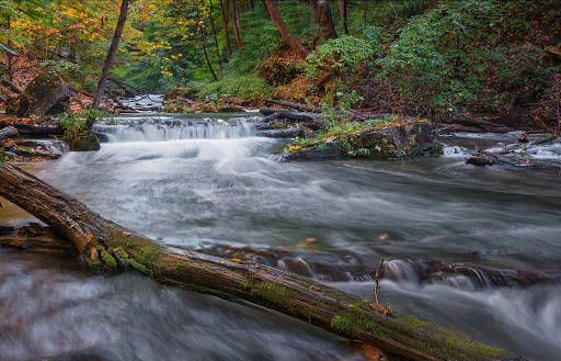 beaverdams-creek-ontario.jpg - Beaverdams Creek, just below DeCew falls in St. Catharines, Ontario.