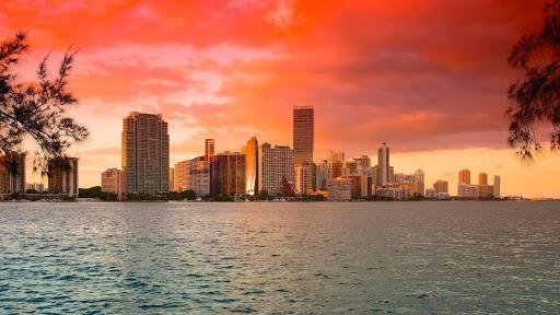Miami Live Wallpaper