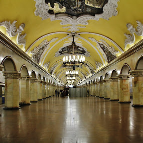 Moscow Metro by João Branquinho - Buildings & Architecture Public & Historical ( passenger, russia, moscovo, subway, metro, moscow, underground )