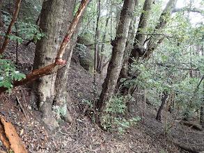 神社の右手に登山道の続き