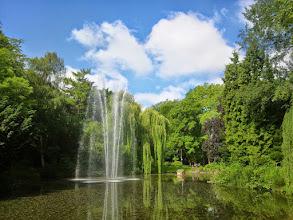 Photo: Blauweiß an Grüngelb. Guten Appetit! Den Wasservögeln scheint's zu schmecken :-)