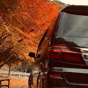 アルファード 10系 後期 1年後に乗る車🚗!のカスタム事例画像 齋藤翔也さんの2019年11月24日22:09の投稿