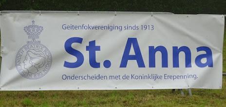 Photo: Geitenkeuring Sint Anna te Gilze op 4 juni 2016.