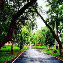 IIM Calcutta by Chanchal Verma - City,  Street & Park  Street Scenes ( #streetphotography #iimc #iimcalcutta #afterrain #monsoon )