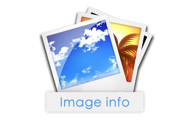 Image Info Hotkey