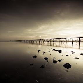 Warm Fade by Johari Nasib - Landscapes Waterscapes ( lights, monochrome, nature, black and white, minimalist )