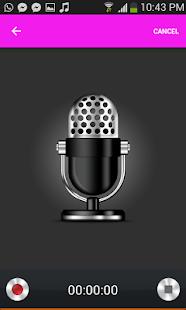 Grabadora de Voz Experta - náhled