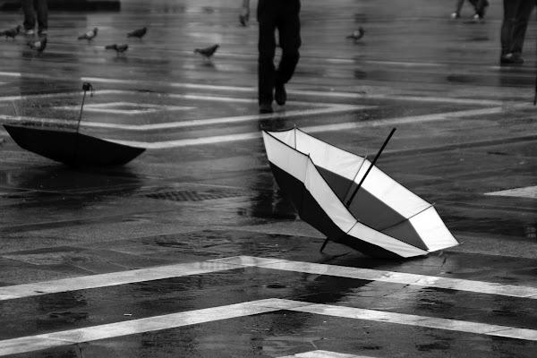 2 ombrelli di fabiobaldi