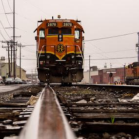 Tracks by Nolan Hauke - Transportation Trains ( reflection, seattle, railroad, track, freight, train )