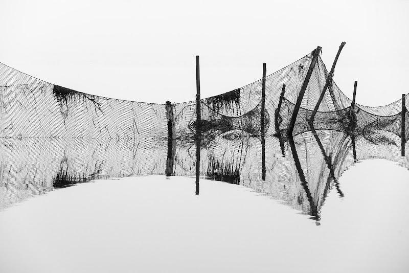 Rete da pesca di Peter_Sossi