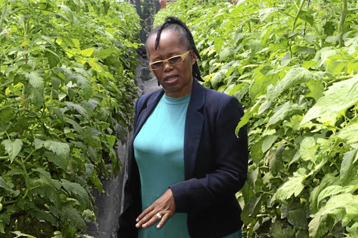 Busisiwe Molefe is the first black female farmer from KwaZulu-Natal to supply macadamias to the export market./Supplied
