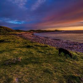 Scottish Sunset by Valerie Dyer - Landscapes Sunsets & Sunrises ( sunset )