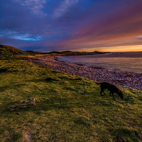 Scottish Sunset by Valerie Dyer - Landscapes Sunsets & Sunrises ( sunset )