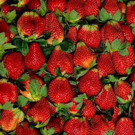 Strawberries  by Aung Kyaw Soe - Food & Drink Fruits & Vegetables (  )