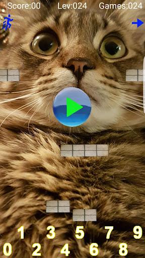 Taquito游戏 - 数学球猫孩子们免费教育游戏