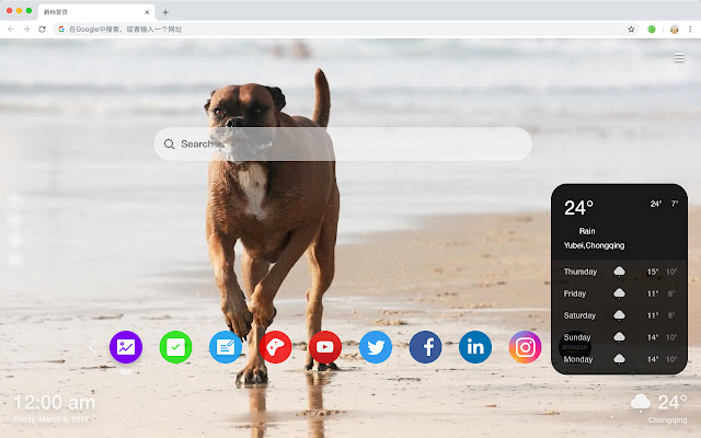 Boxers Popular Pets HD New Tabs Themes