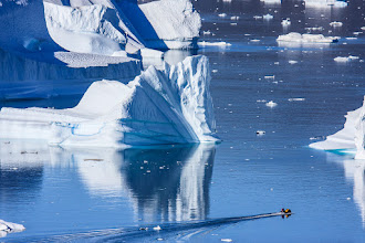 Photo: One of our zodiacs being dwarfed by the surrounding icebergs. Scoresbysund, Greenland