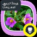 Ayurvedic Herbal  Plants Tips icon