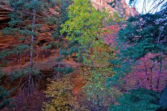 Photo: Zion Angels Landing Hike 309