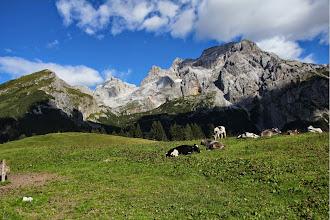 Photo: Val di sacco con Cima Selvata e Palon dei Mughi a sx