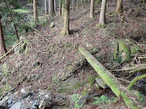 渡渉(丸太の橋)