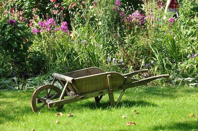 An old wooden wheelbarrow on a lawn with a wildflower garden as a backdrop.