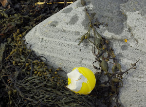 Photo: These balls, part of much larger flotation elements, turn up all over our coastline. Over the last three years, I have found several 1000.