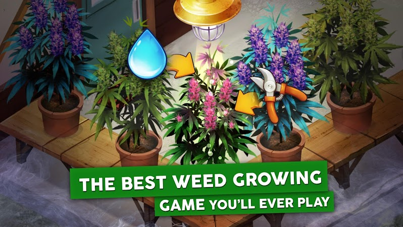 Hempire – Weed Growing Game v1.9.1 [Mod]