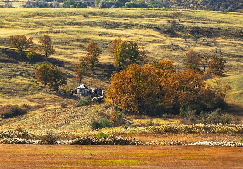 Nel bel mezzo del autunno di Eduard