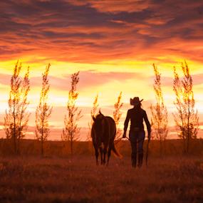 by Tara McKenzie - Landscapes Sunsets & Sunrises ( #albertaskies, #horse, #cowgirl )