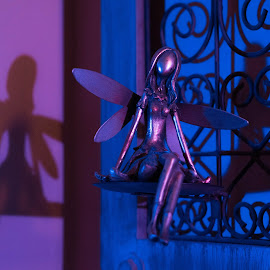 Fairy blues by Michel Bédard - Artistic Objects Other Objects ( purple, blue, color, fairy, blues )