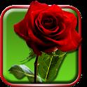 Rosas Papel de Parede Vivo icon