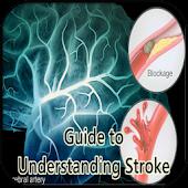 Guide to Understanding Stroke