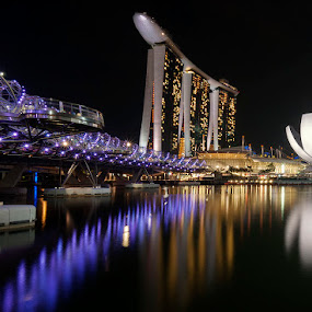 3-in-1 by Emil Gonzales - Landscapes Travel ( marina bay sands, artscience museum, the helix bridge, marina bay )
