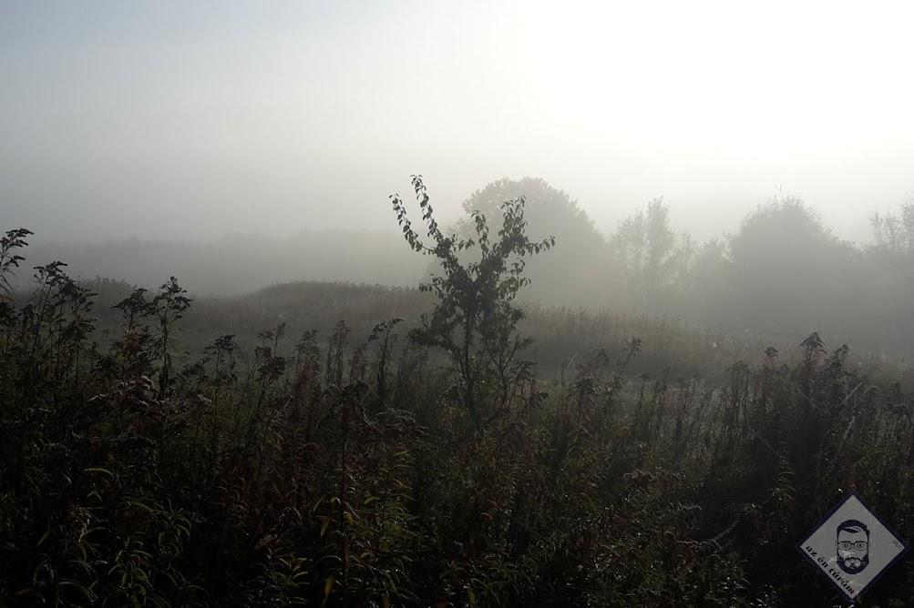 KÉP / Valahol a ködben ott van Bakonybél