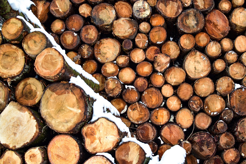 La legna con il suo mantello bianco. di marinafranzone