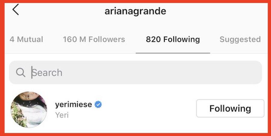 ariana following
