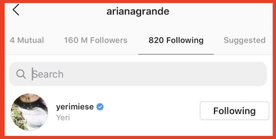 ariana following