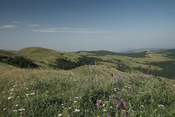 Auf dem Weg zum Pass haben wir ein weiter Blick über Täler mit Wiesen und Wälder.