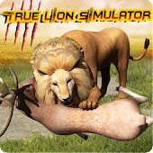 True Lion Simulator