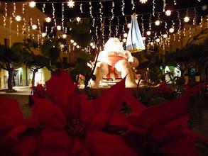 Photo: Terrasini im Dezember ferienwohnung.sizilienreise.info