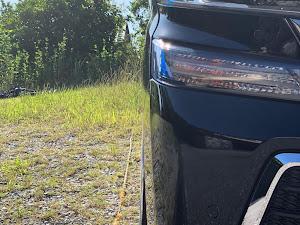 ヴェルファイア AGH30W Z-Gエディションのカスタム事例画像 H&Mさんの2020年09月27日16:00の投稿