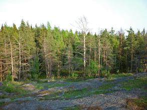 Photo: Sziklás-erdős-sziklás