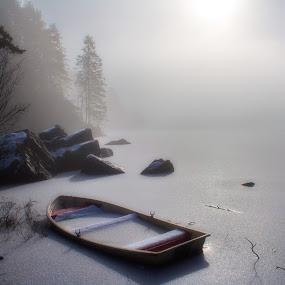 The Fog by Inna Cleanbergen - Landscapes Weather ( bergen, #everydaybergen, scandinavia, landscape, norway )