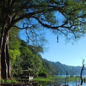 Tamblingan by Yande Ardana - Landscapes Travel ( bali, tamblingan )