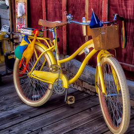 0743-TB-0703-03-16 by Fred Herring - Transportation Bicycles