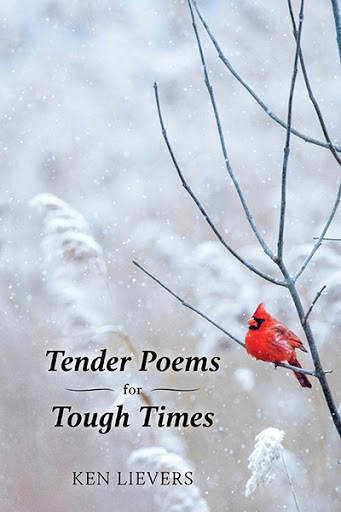 Tender Poems for Tough Times
