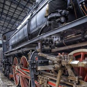 by Jose Figueiredo - Transportation Trains ( italia, train, museum,  )
