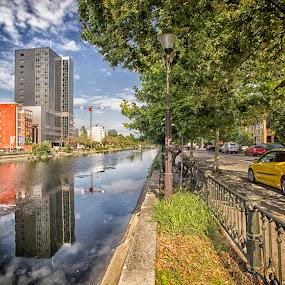 Reflections by Panait Sorin - City,  Street & Park  City Parks ( colors, street, city )